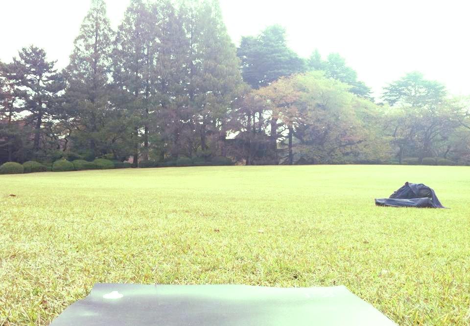 shinjyukugyoen-earthing-2